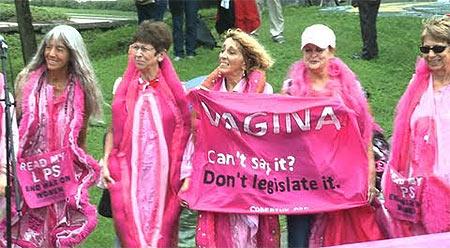 SPLIT 12.4. PROSVJED PROTIV RATIFIKACIJE ISTAMBULSKE KONVENCIJE  - Page 2 Vaginas_code_pink
