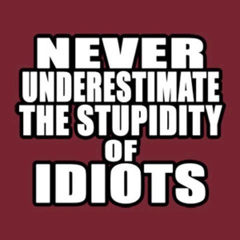 Never Underestimate The Stupidity of Idiots