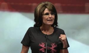 NRA Palin