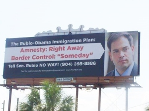 amnesty now