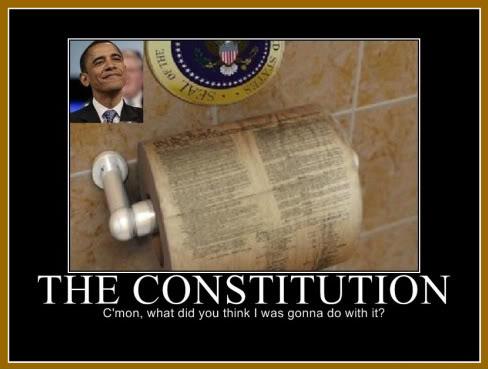 Obama Toilet Paper Constitution