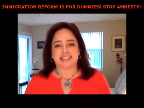 stop amnesty  immigration reform