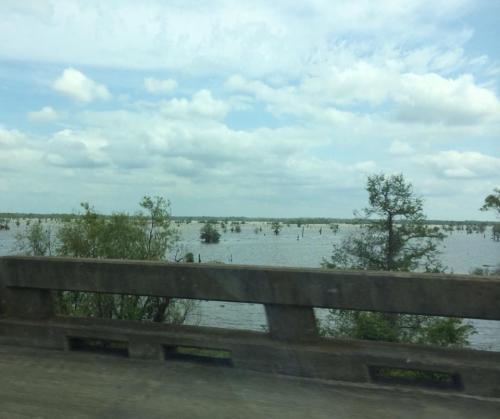 AL bayou