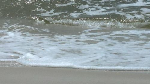 Orange Beach 1