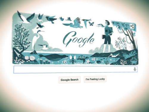 google rachel c